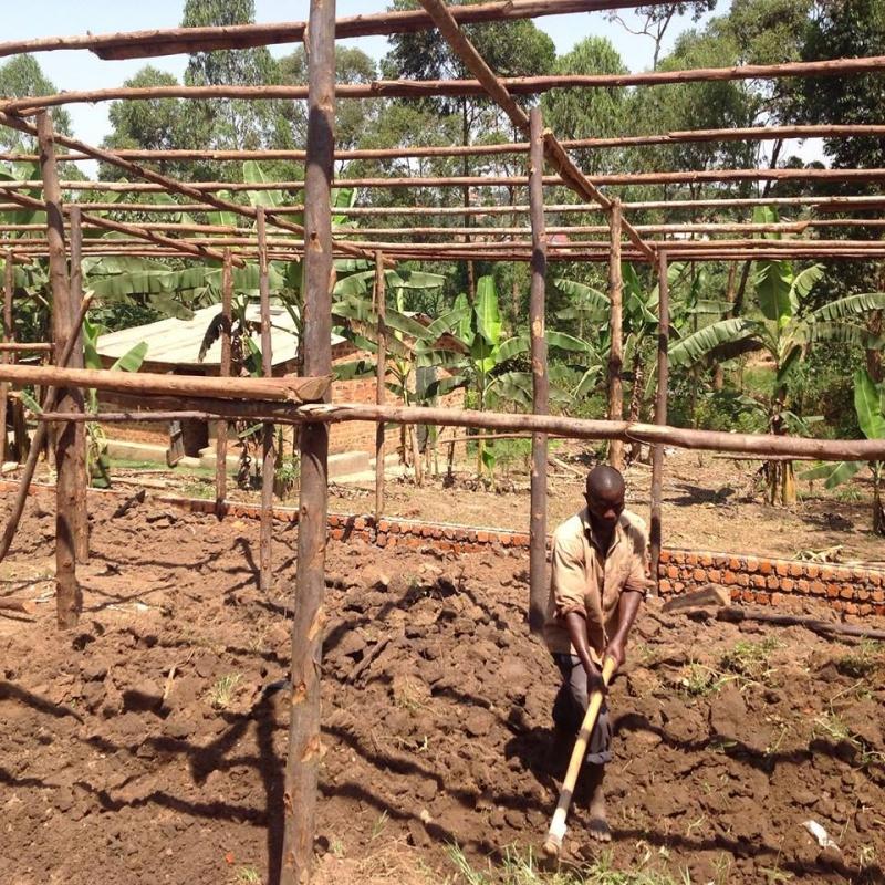 Investing in Poultry Farming in Uganda